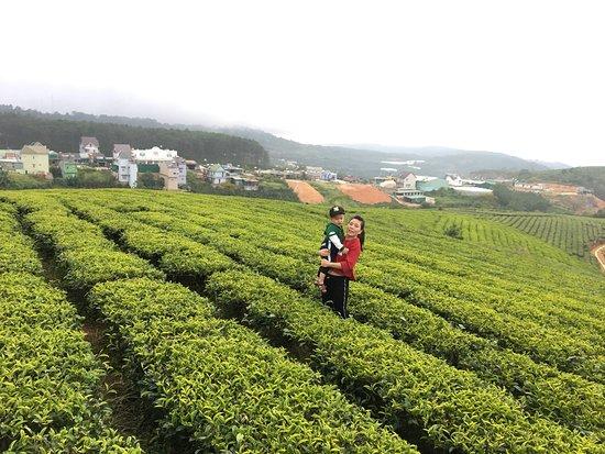 Vietnam Backpackers Travel