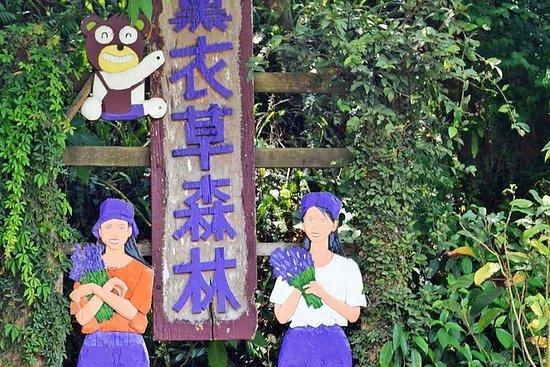 Ganztägige private Tour durch Taichung und Lavender Cottage mit...