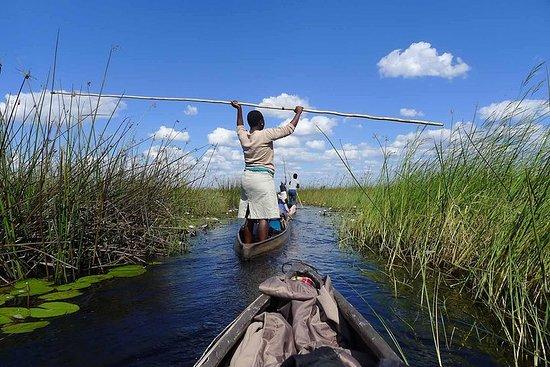 8 Days Okavango Delta & Victoria...