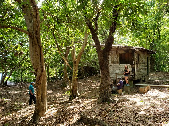 Bush Bush Wildlife Sanctuary