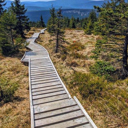 Hejnice, Češka Republika: Cesta na horu Smrk  Jizerské hory Bohemia