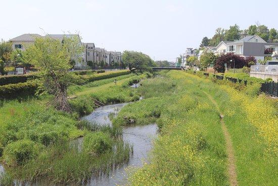 野川沿いの遊歩道への出入口(三鷹市) – รูปถ่ายของ Nogawa River, มิตากะ  - Tripadvisor