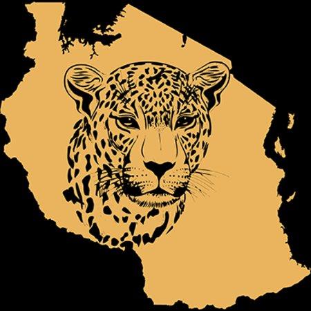 Ngorongoro Conservation Area, Tanzanie: chui logo