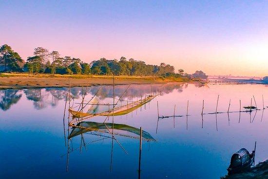 Visite privée du domaine de thé d'Assam, de la forêt tropicale et de...