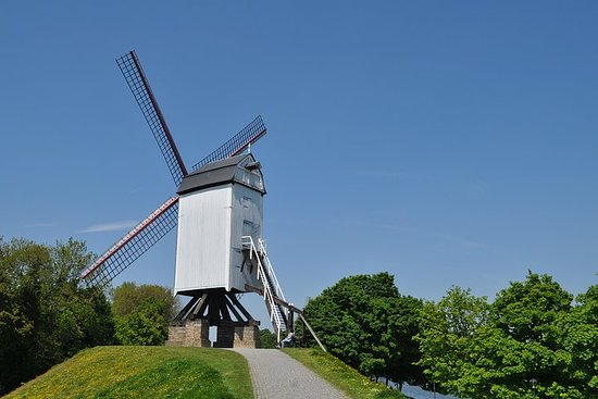 Bicycle tour, 3 h, windmills of...