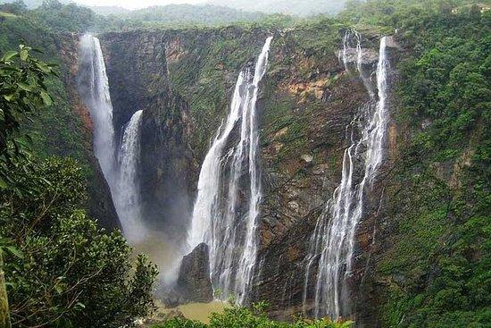 Tour privato di 3 giorni da Bhopal al Parco nazionale di Satpura
