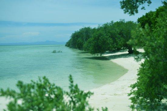 Pulau Kassa, merupakan Destinasi Wisata Bahari yang dikatagorikan sebagai TWAL (Taman Wisata Alam Laut). Terletak di Negeri Kaibobo, Kecamatan Seram Barat, kabupaten Seram Bagian Barat (SBB). Merupakan pulau kecil yang memiliki pasir putih yang indah bila terjadi surut terendah (Meti Kei), juga Terumbu Karang yang masih baik. Landscape nya memiliki aneka vegetasi juga floar dan fauna khas perairan tropis seperti beberapa jenis ikan, burung, kepiting, anggrek, pohon kelapa, mangrove dan lainnya.