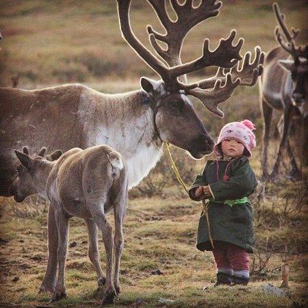 רוסיה: Siberia 6