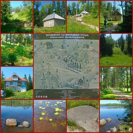 Bolshoy Solovetsky, Nga: Соловецкий архипелаг. Ботанический сад