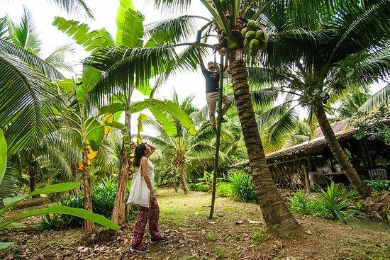 Coconut Farm & Floating Market...