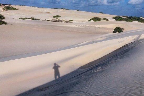 Promenade en buggy (dunes Genipabu)