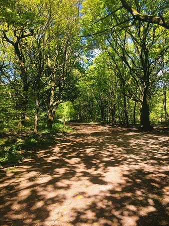 Rivington, UK : 🌳🌳Spring Colours 🌳 🌳