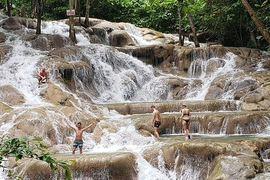 Day Tour to Dunn's River Falls and Park...