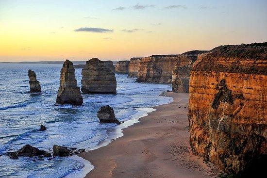 Great Ocean Road Tour Plus Koala, Forest Walk e Morning Tea.