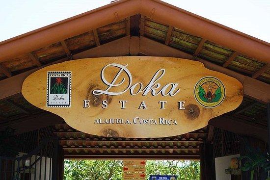 Café Doka, Volcán Poas y Jardín de...