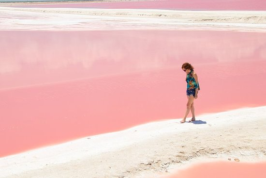 Las Coloradas & Ek Balam Tour