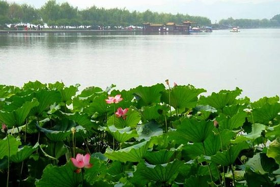 Private Tour: Hangzhou Heaven on Earth...