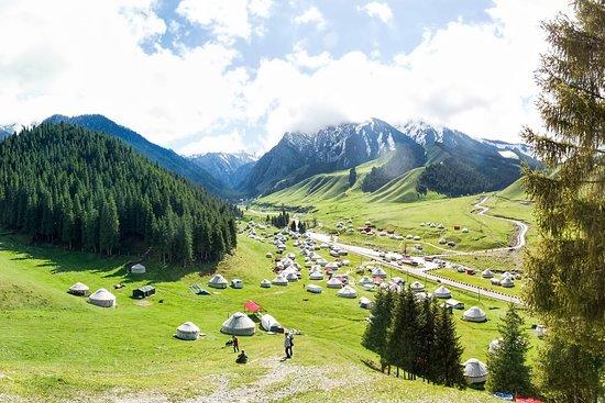 Golden Horde Travel Agencyの画像 - オロジーの写真 - トリップアドバイザー