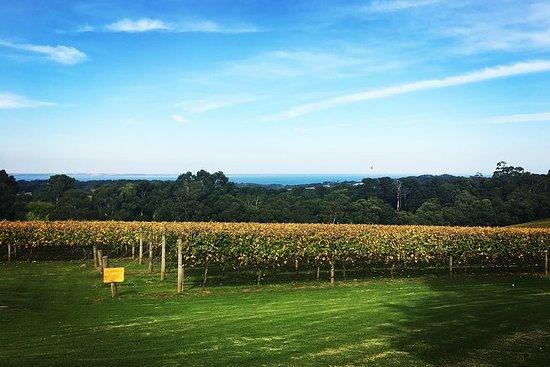 Mornington Peninsula Private Car Winery...