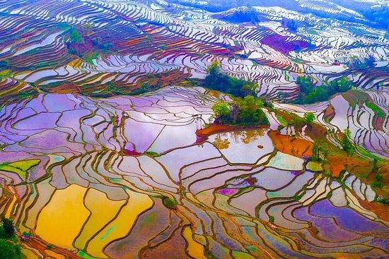 2-Day Private Photography Tour to Yuanyang Rice Terrace from Kunming