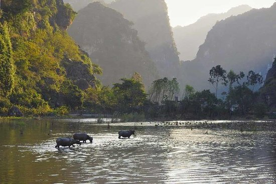 Hoa Lu Tam Coc Luxury 1 day