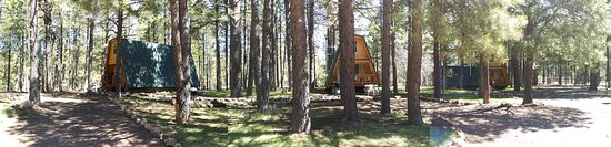 Forest Lakes, AZ: All three cabins - wide pic