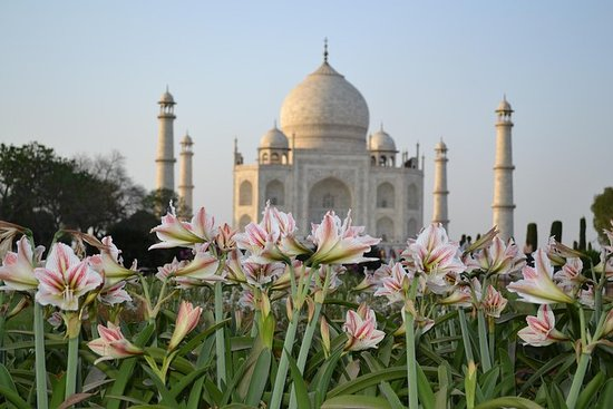 Фотография One Day Taj Mahal & Agra Tour From Delhi By Express Train( Shatabdi Exp )