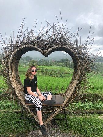 Bali Intro - 12 Day – kép