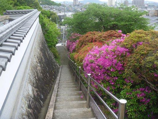 Kameyamahontokuji Nishiyama Byosho