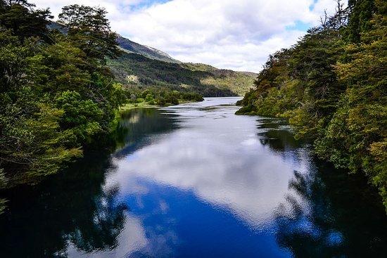 Tangol San Martin de los Andes