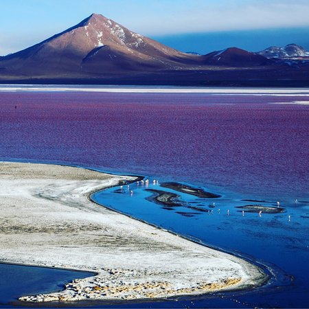 Laguna Colorada - #uyuni - #bolivia A scenic wonder Do you know why this landscape of the Potosi altiplano displays such spectacular colors? leave me in the comment. why?  ✍️👇 www.andeconsultants.com