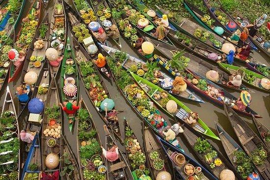 湄公河三角洲一日游乘快艇
