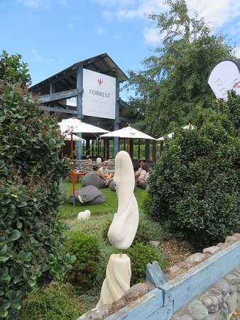 A view of the outdoor seating at Forrest Winery