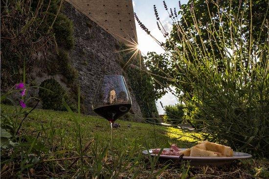 Alba, Italien: Barolo wine tour e pic-nic