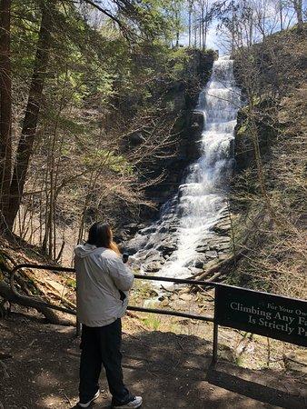Manlius, NY: Bottom of the falls