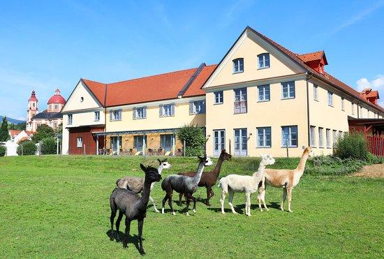 JUFA Hotel Poellau - Bio-Landerlebnis