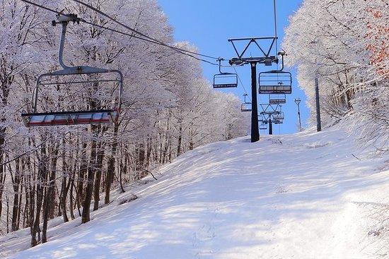 1 dages skilift + skiløb bus fra Tokyo
