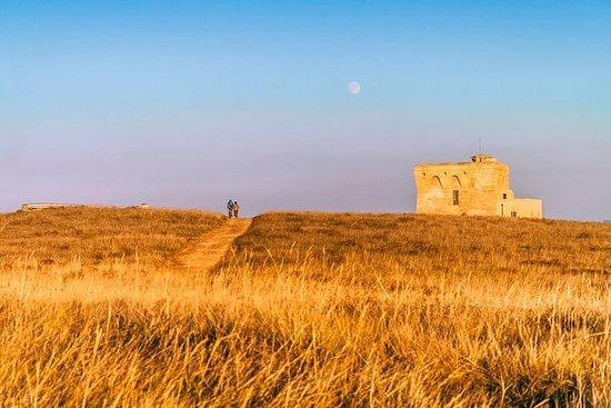 Visite de la réserve de Torre Guaceto