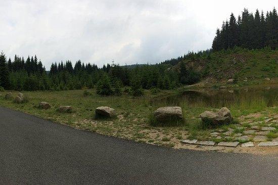 1 day Bike Tour - Jizera Mountains...