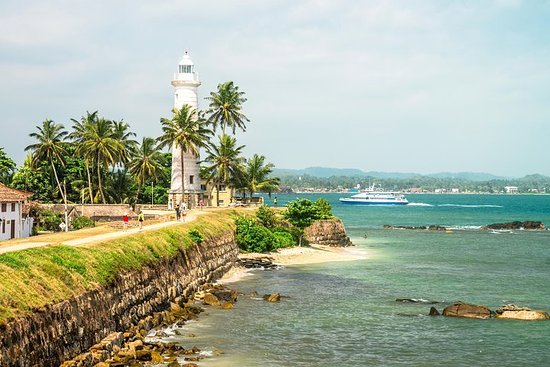 Galle City + Tea Plantation Tour