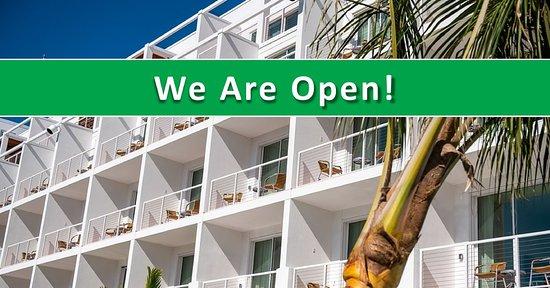Junior Deluxe Suite - Изображение The Sarasota Modern, a Tribute Portfolio Hotel, Сарасота