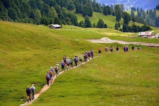 """Camino de Santiago"": VOIE PORTUGAISE. Visite privée à pied de Tui"