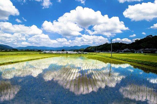 Yamaga – fotografia