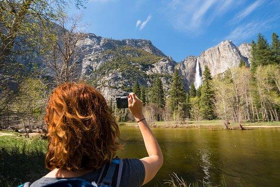 サンノゼ発、ヨセミテ国立公園とジャイアント・セコイアを見るツアー