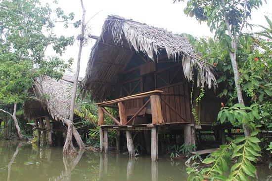 Orinoco Delta 사진