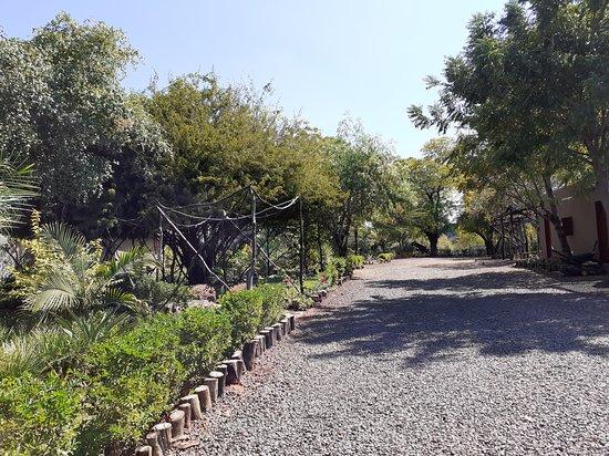 Nsofu - Lower Zambezi: Entrance driveway