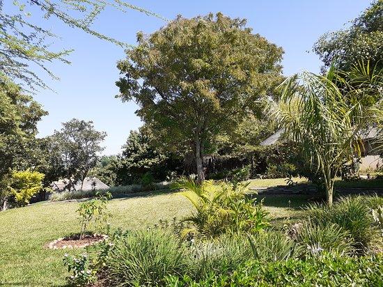 Nsofu - Lower Zambezi: Gardens