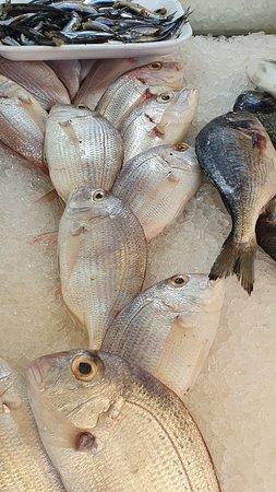 KORNER RESTAURANT fishes