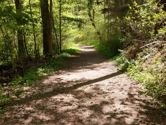 A nice huge wide trail that comes to a circle on south side