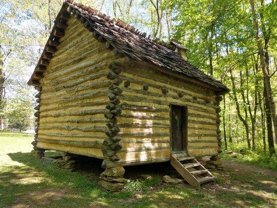 Old log cabin homestead